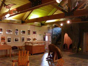 fox island interior